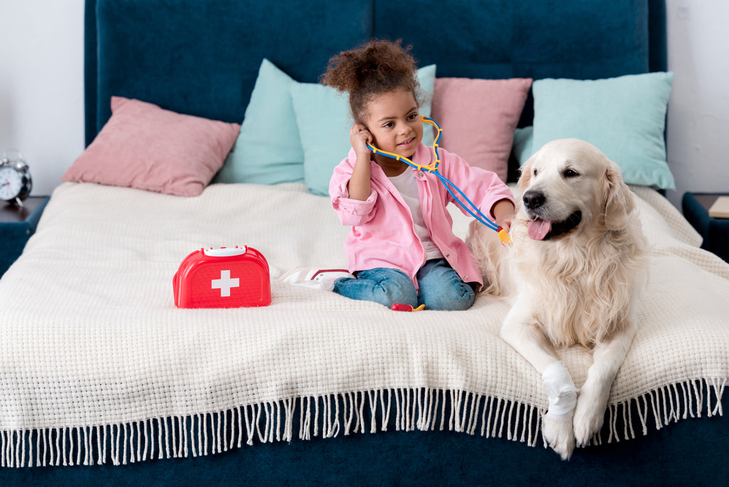 Dog first aid is important, but it's no substitute for proper veterinary care.