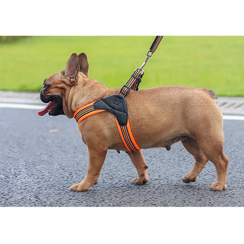 Reflective Mesh Vest Harness