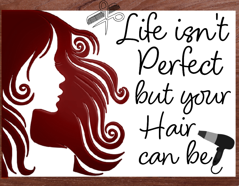 Hair Salon sign- Life isnt perfect but hair can be