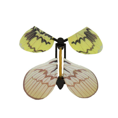 The Magic Flying Butterfly (5 pc set) -Offer