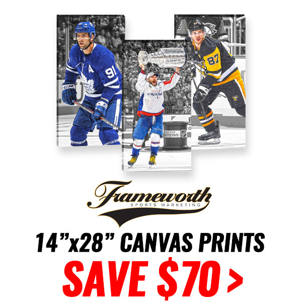 FRAMEWORTH CANVAS PRINTS - 14