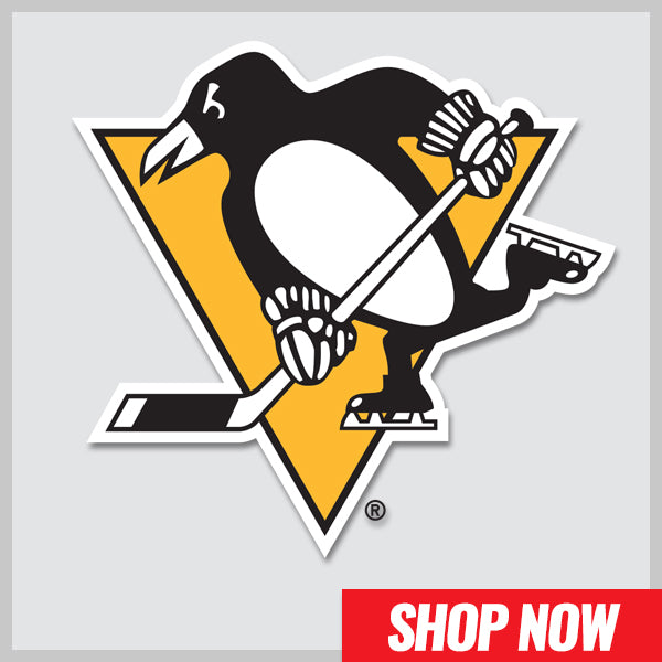 Hockey Stick Sale