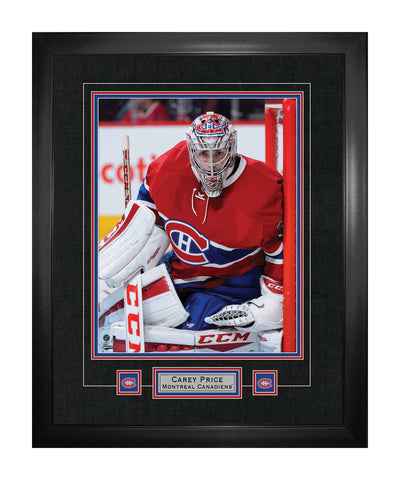 FRAMEWORTH MONTREAL CANADIENS PRICE FRAMED 22X28
