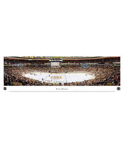 FRAMEWORTH PANORAMA BOSTON BRUINS ARENA PLAQUE