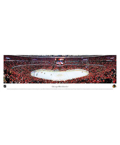 FRAMEWORTH PANORAMA CHICAGO BLACKHAWKS ARENA PLAQUE
