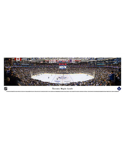 FRAMEWORTH PANORAMA TORONTO MAPLE LEAFS ARENA PLAQUE