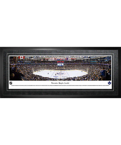 FRAMEWORTH PANORAMA TORONTO MAPLE LEAFS ARENA FRAME