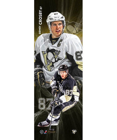 FRAMEWORTH VERTICAL PLAYER PITTSBURGH PENGUINS CROSBY PLAQUE