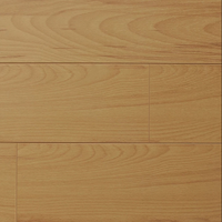 Ancient Beech - Classic Collection - 12mm Laminate Flooring by Republic - Laminate by Republic Flooring