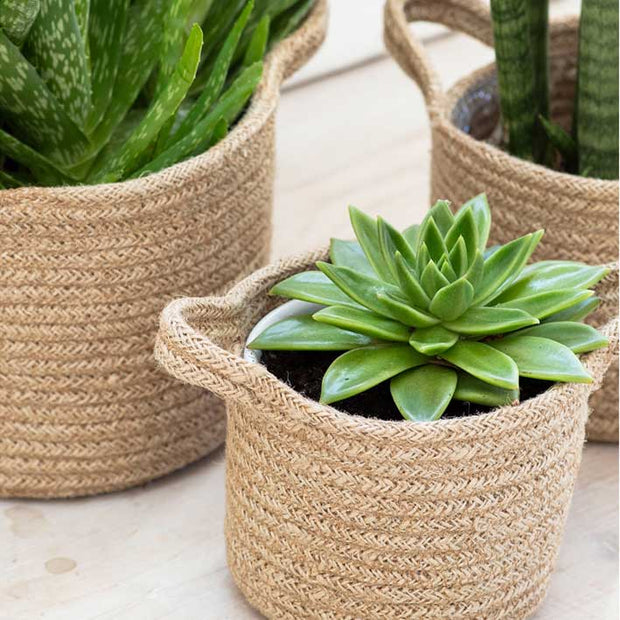 Woven Basket Planters - Set of 3