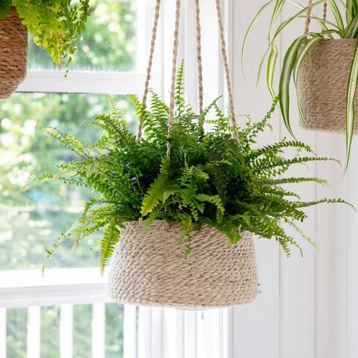 Woven Seagrass Hanging Planter