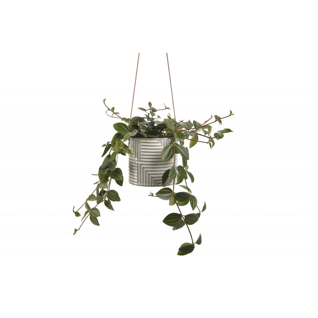 Modena Ceramic Hanging Pot