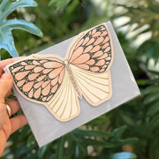 Pink Moth - A6 Greeting Card