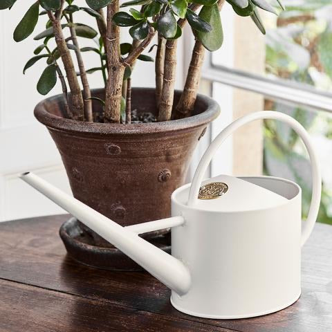 1.7L Watering Can