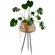 Bamboo Planter on Metal Stand