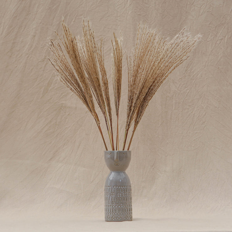 Dried Miscanthus Feather Grass