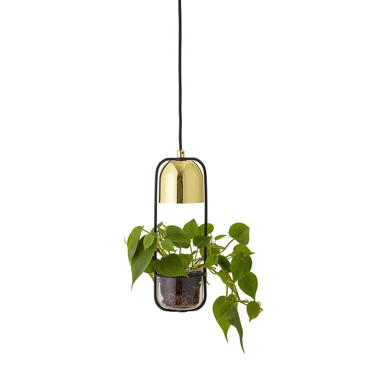Ceiling Lamp with Glass Planter