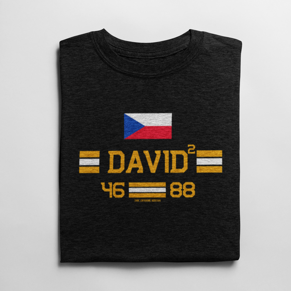 David² Czech Boston Hockey T Shirt