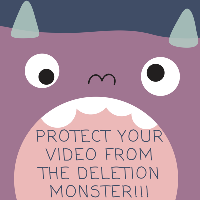 Video Deletion Protection