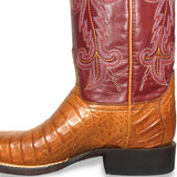 Ladies Lucchese M4941 Caiman Annalyn