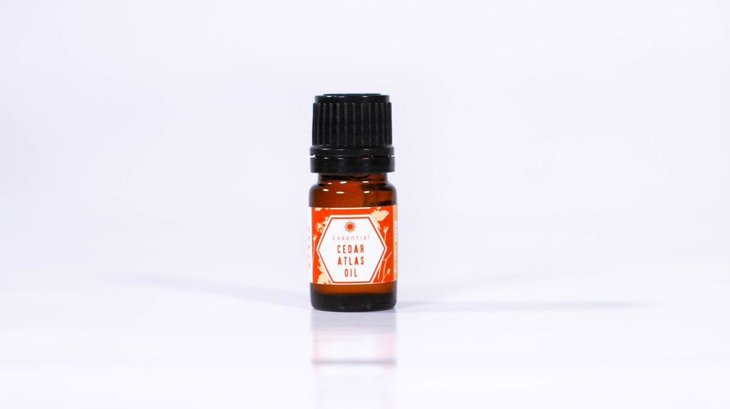 Cedar Atlas Essential Oil - 0.17oz