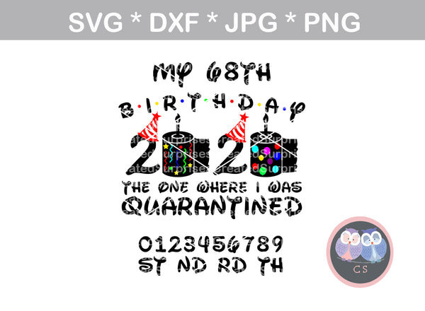 Birthday, the one where I was quarantined, balloons, changable age, confetti, toilet paper, 2020, funny, digital download, SVG, DXF, cut file, personal, commercial, use with Silhouette Cameo, Cricut and Die Cutting Machines