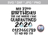 My birthday, the one where I was quarantined, mask, funny, digital download, SVG, DXF, cut file, personal, commercial, use with Silhouette Cameo, Cricut and Die Cutting Machines