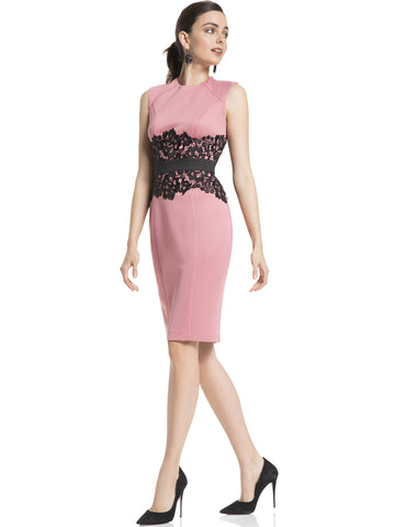 Lace-Accent Sheath Dress in Pink Rouge