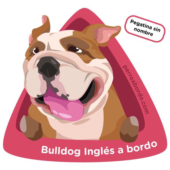 Bulldog Inglés a bordo