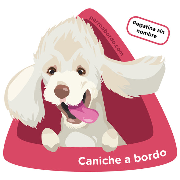 Caniche a bordo