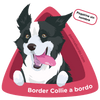 Pegatina Border Collie a bordo