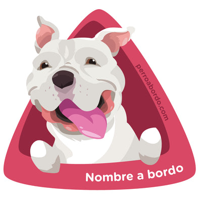 Pitbull Blanco a bordo