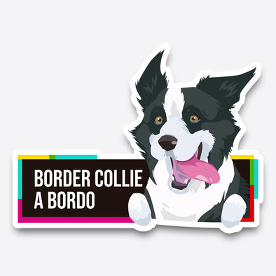 Border Collie a bordo - Pegatina - Perro a bordo