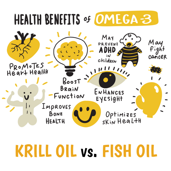 Krill Oil Basics: What You Need to Know - Part 1
