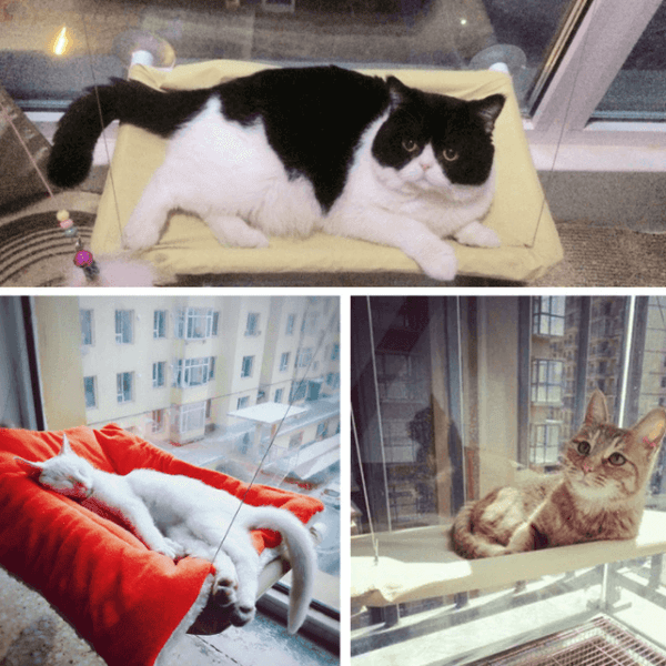 Practical Cat Bed - Lazy Hammock - Customers