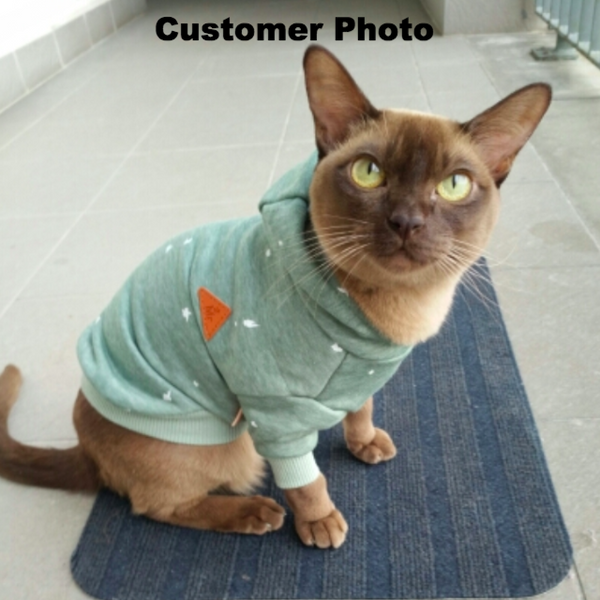 The Sports Cat Hoodie - Customer