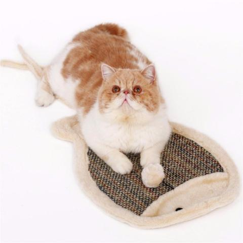 My Best Friends Cat Scratcher - Global View