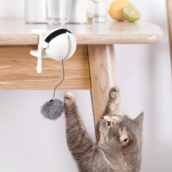 Yo Yo Cat Lifting Toy