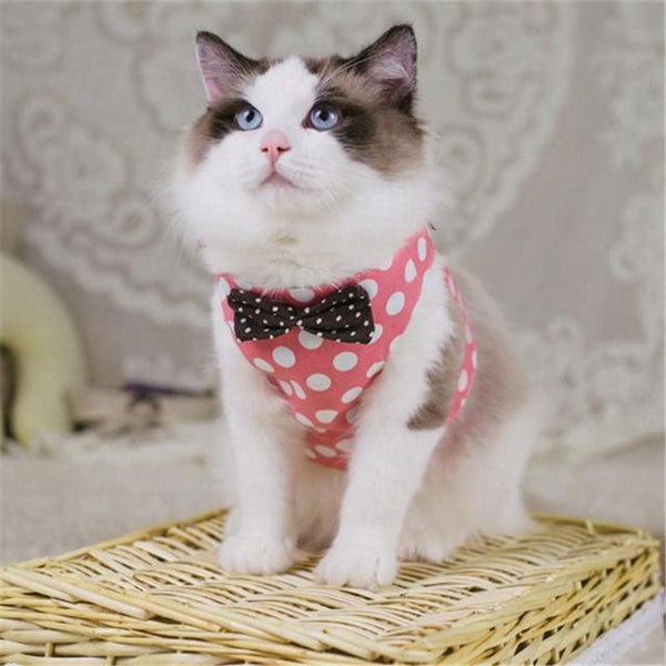 Polka Dot Harness - Pink