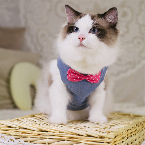 Cat Harness - Gentlecat