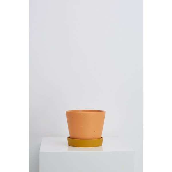 Capra Designs Louise Planter - Desert & Gold