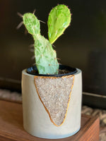 Smoky Quartz Mod Planter - 5""