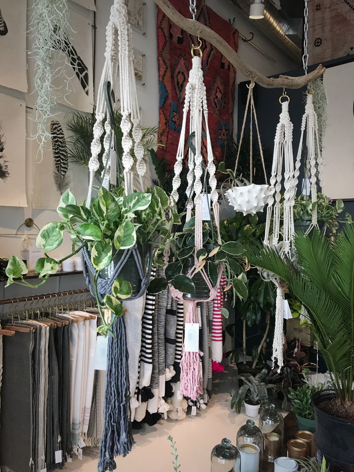 Ombre Dip Dyed Macrame Plant Hanger