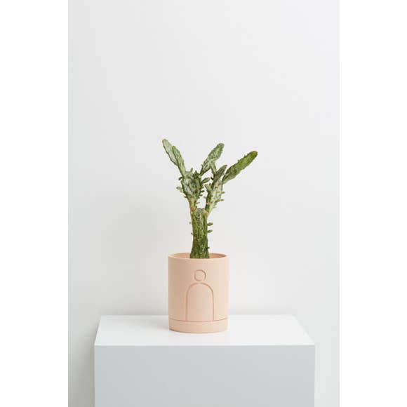Capra Designs Etch Planter in Salt