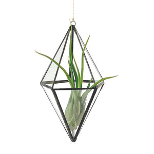 Load image into Gallery viewer, Diamond Air Plant Hanger