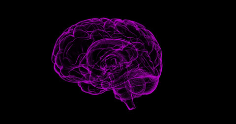 Brain illustration with black background
