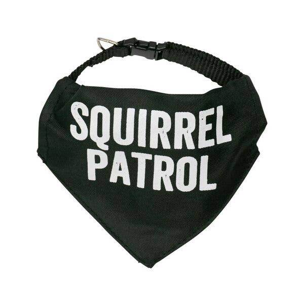 Squirrel Patrol Pet Bandana/Collar SMALL