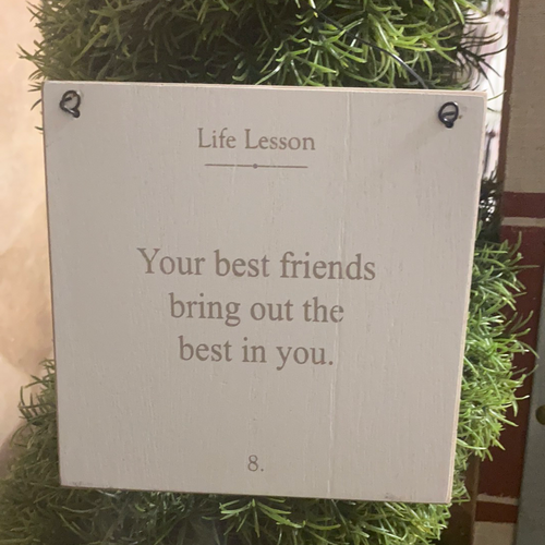 Best Friends Life Lesson Sign