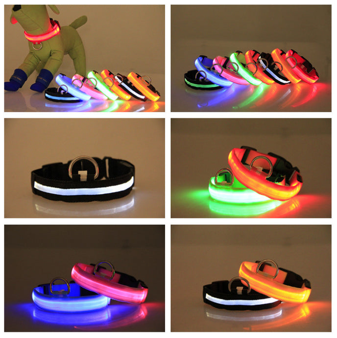LED Dog Collar Pink Red Blue Orange Yellow Purple Safety Night Walks Cool LED USB Rechargeable Tech Products