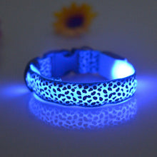 LED Dog Collar Leopard Print Pink Red Blue Orange Yellow Purple Safety Night Walks Cool LED Tech Products
